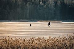 Рыбная ловля льда людей на озере Стоковые Изображения