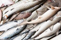 рыбный базар влажный Стоковое фото RF