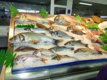 Рыбный базар в Испании Стоковые Фото