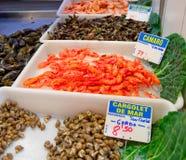 рыбный базар Испания boqueria barcelona Стоковое Изображение RF