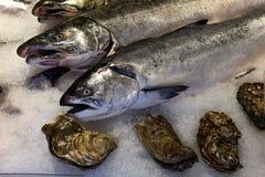 Рыбный базар с семгами и устрицами Стоковое Фото
