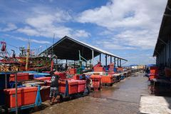 Рыбный базар Kota Kinabalu Сабах стоковое фото rf
