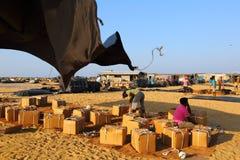 Рыбный базар Negombo Стоковое Фото
