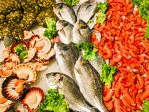 рыбный базар venetian Стоковые Фотографии RF