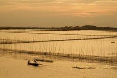 Рыбоводческие хозяйства Стоковые Изображения