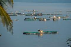Рыбоводческое хозяйство на озере Taal Стоковое Изображение