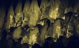 Рыбозавод посоленной трески стоковые фотографии rf