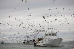 рыбозавод Стоковое Изображение