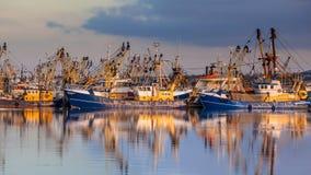 Рыбозавод в гавани Lauwersoog стоковые изображения