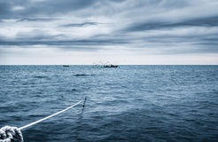 рыбозавод стоковое фото