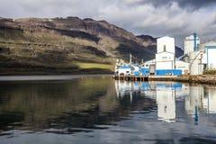 Рыбозавод Seydisfjordur завода стоковое изображение rf