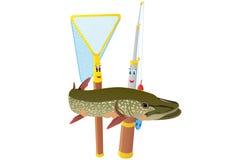 Рыболовная удочка, сеть и щука Стоковые Изображения RF