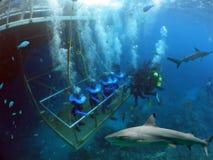 рыболовное судно Стоковое фото RF