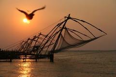 Рыболовные сети Кералы на заходе солнца стоковая фотография rf