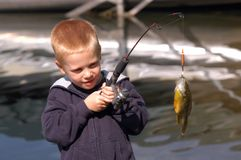рыболовство мальчика стоковая фотография rf