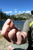 Рыболовство мухы Стоковые Изображения