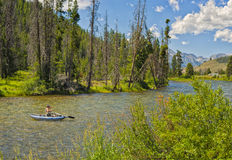Рыболовство реки, Айдахо Стоковые Изображения RF