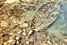 рыболовство шлюпки sunken стоковое изображение
