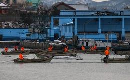 Рыболовы подготавливают пойти к морю уловить рыб Стоковые Фотографии RF