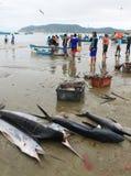 Рыболовы Puerto Lopez, эквадор стоковые фото