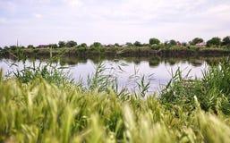 Рыболов на реке с рыболовной удочкой o стоковая фотография