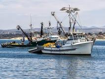 Рыболовецкие судна в гавани Монтерей, Калифорнии стоковые изображения rf