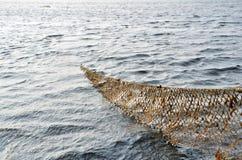 Рыболовная сеть в Балтийском море Стоковые Изображения
