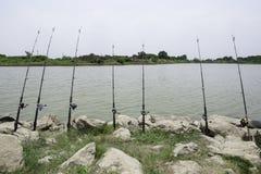 Рыболовная удочка Стоковые Изображения RF