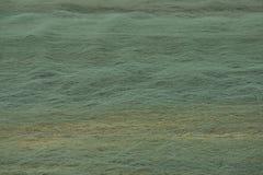 Рыболовные сети 2 засыхания Стоковое фото RF