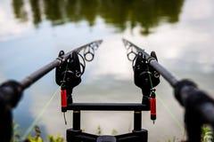 Рыболовные удочки карпа Стоковое Фото