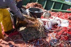 Рыболовы в гавани стоковая фотография