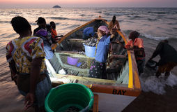 Рыболовы и женщины рынка, Малави Стоковое Изображение RF