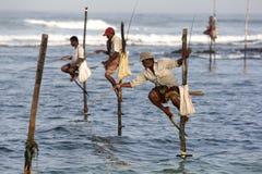 Рыболовы поляка на работе в раннем утре на Koggala на южном береге Шри-Ланки Стоковое фото RF