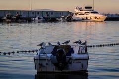 Рыболовы приютят на старой Марине Стоковое Изображение