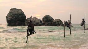 Рыболовы удя, заход солнца ходулей, nr Галле, побережье SW сток-видео