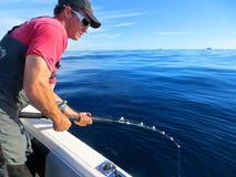 Рыболов Кейптауна Стоковое фото RF