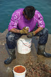 Рыболов на работе Стоковые Фото