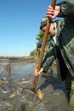 Рыболов на работе Стоковая Фотография RF