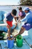 Рыболов омара на пляже Лос Cobanos Стоковые Фотографии RF