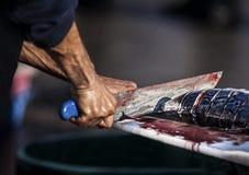 Рыболов отрезая рыб Стоковые Изображения RF