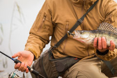 Рыболов с окунем стоковая фотография rf