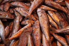 Рыбы барабульки на рынке стоковое фото