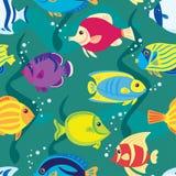 рыбы безшовные Стоковое фото RF