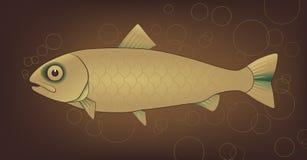 Рыбы вектора с пузырями иллюстрация штока