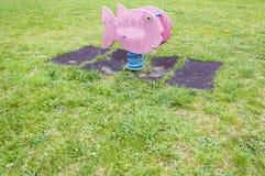 Рыбы весны спортивной площадки Стоковое фото RF