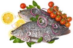 рыбы вишни изолировали лимон Стоковое Фото
