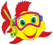 рыбы водолаза Стоковые Изображения RF