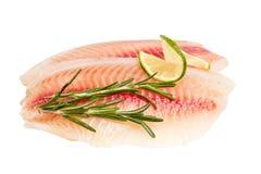 рыбы выкружки белят ломтик известью Стоковая Фотография RF