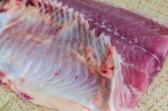 рыбы выкружки сырцовые Стоковые Изображения RF