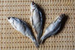 Рыбы высушенные на циновке Стоковая Фотография